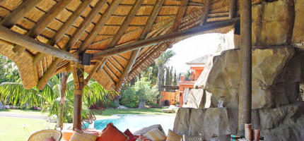 Interior view thatched finish